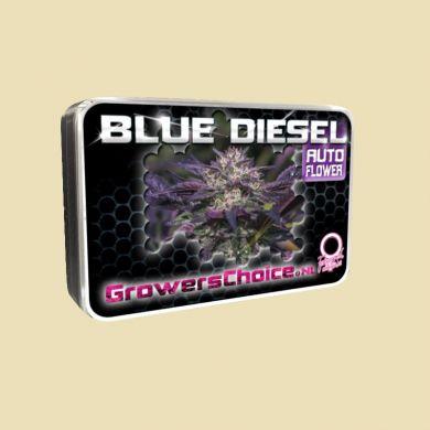 Blue Diesel (Autoflower)