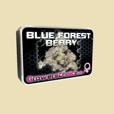 Blue Forest Berry