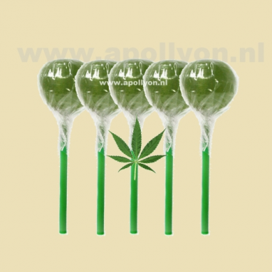 Cannabis Weed Lollypop 5x