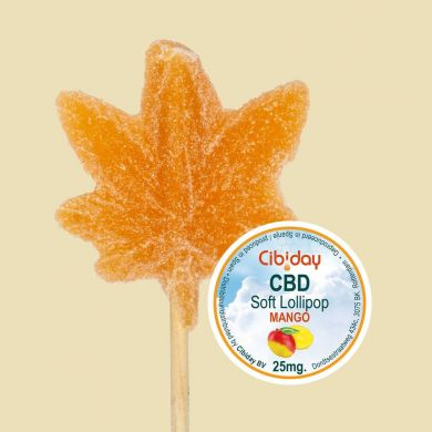 CBD Lollipop Groot Orange