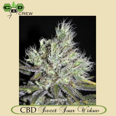 CBD Sweet &  Sour Widow