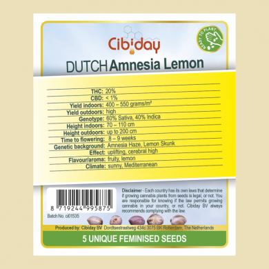 Dutch Amnesia Lemon