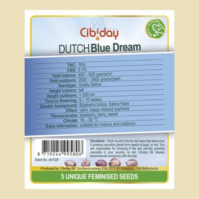 Dutch Blue Dream