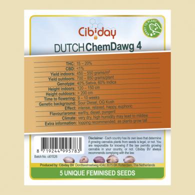 Dutch Chemdawg