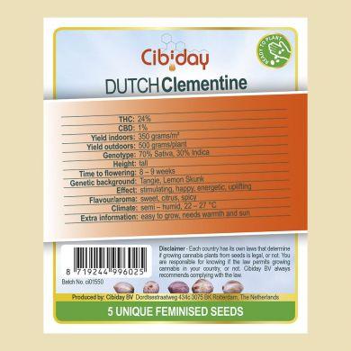 Dutch Clementine