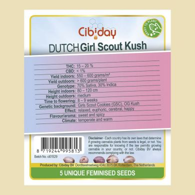 Dutch Girl scout Kush
