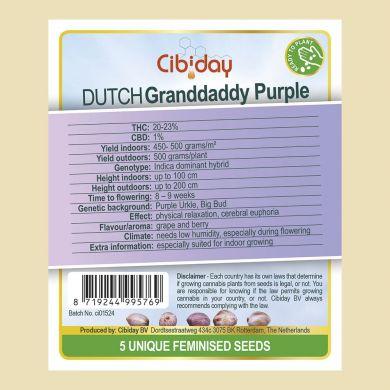 Dutch Granddaddy Purple