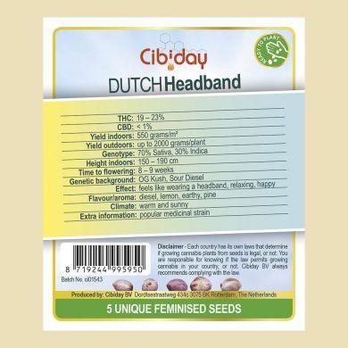 Dutch Headband