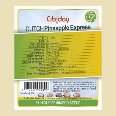 Dutch Pineapple Express