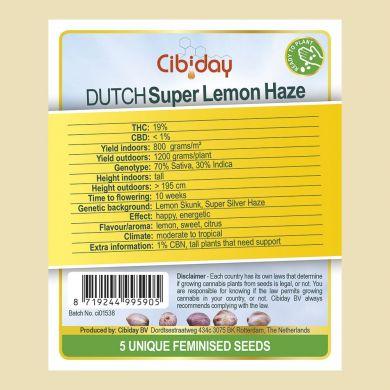 Dutch Super Lemon Haze