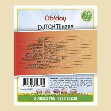 Dutch Tijuana