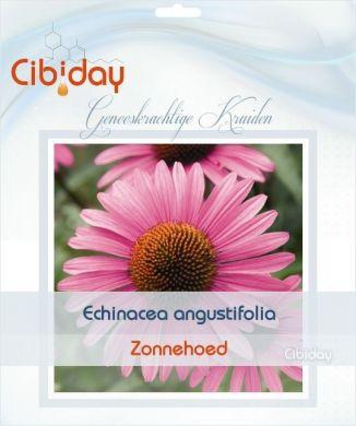 Echinacea Angustifolia Zaden