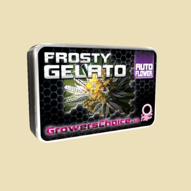 Frosty Gelato (Autoflower)