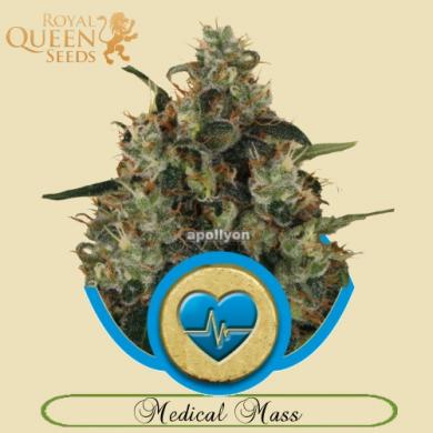 Medical Mass RQS