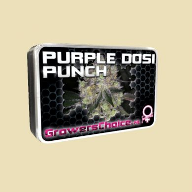 Purple Dosi Punch
