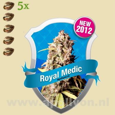Royal Medic 5 zaden