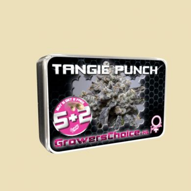 Tangie Punch
