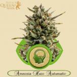 Amnesia Haze Automatic