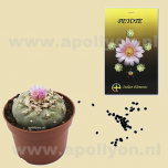 Cactus Zaden Peyote