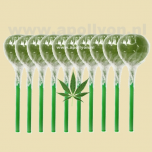 Cannabis Wiet Lolly 10x