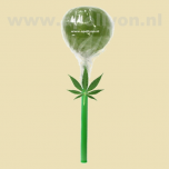 Cannabis Wiet Lolly