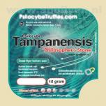 Truffel Tampanensis 15gr