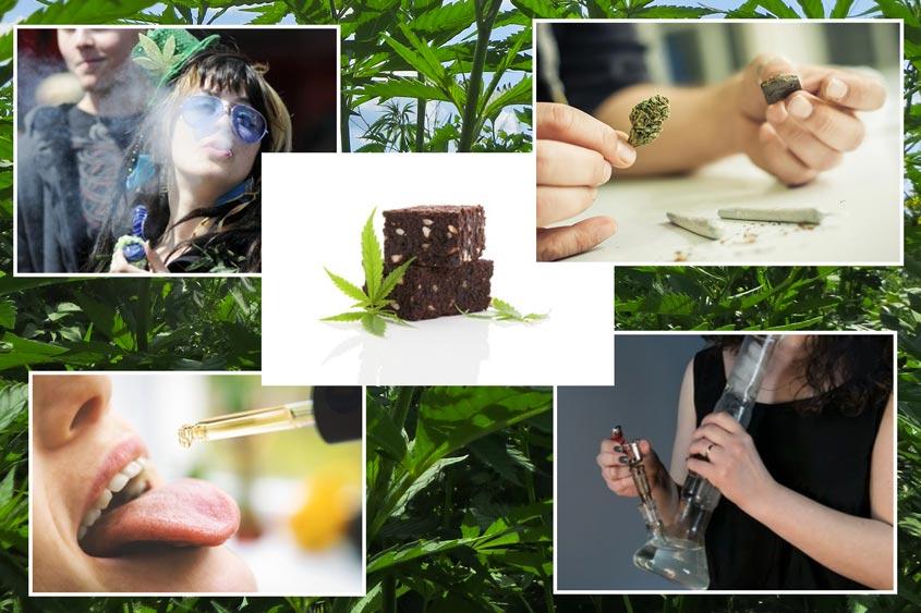 Cannabis gebruiken: welke mogelijkheden zijn er?